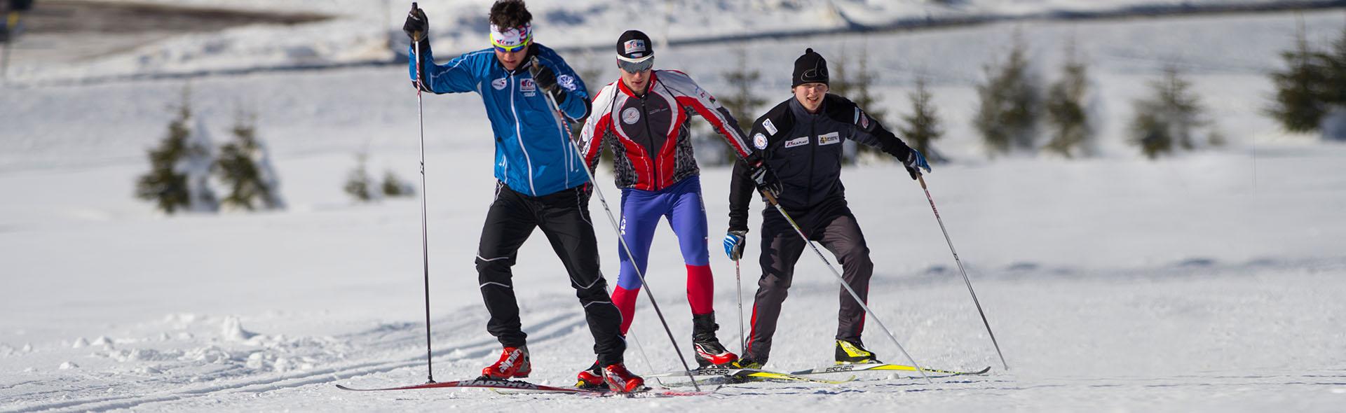 Nordic - Skilanglauf